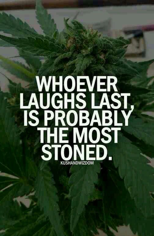 Weed Wallpaper Quotes 83 best Memes - Drugs ...