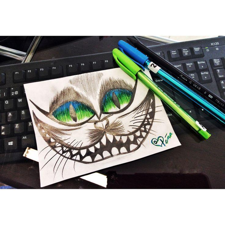 Gato sonriente/ Alicia/ dibujo plumas bic
