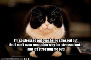 I am sooo stressed out over being stressed out...:)