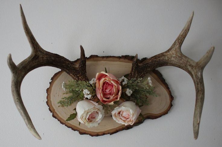 The 25 best deer mount decor ideas on pinterest deer for Antler decoration ideas
