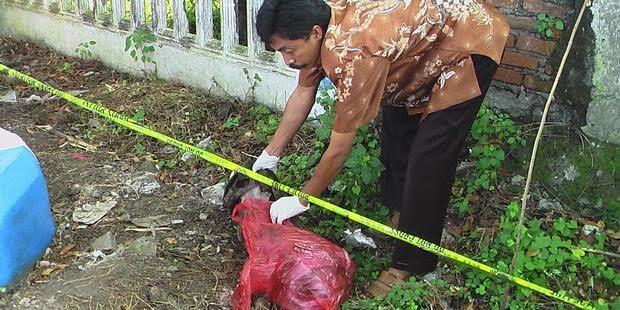 Sesosok Mayat Bayi Ditemukan di Semak Semak Kebun Bojong Sari Baru, Depok, Jawa Barat