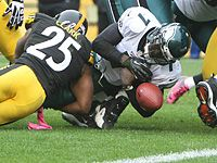 Would you like to see an Eagles vs Steelers 2014 Super Bowl?