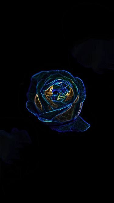 The Neon Rose - Limited Edition 1 of 5