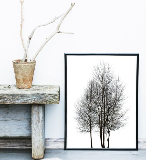 Minimalist Poster Tree Print Scandinavian Art Tree Photo