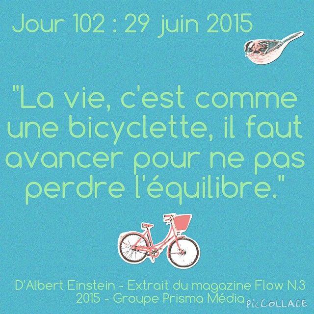 102/365 jours : 365 jours de littérature! @flowmagazine_fr Plus d'infos sur mon blog : le-monde-d-annesophie.e-monsite.com/blog/projet-365-jours-de-littérature.html #365jours #projet365jours #365 #365joursdelitterature #vie #bicyclette #avancer #equilibre #jour102 #flowmagazine #flowmagazine_fr #latergram