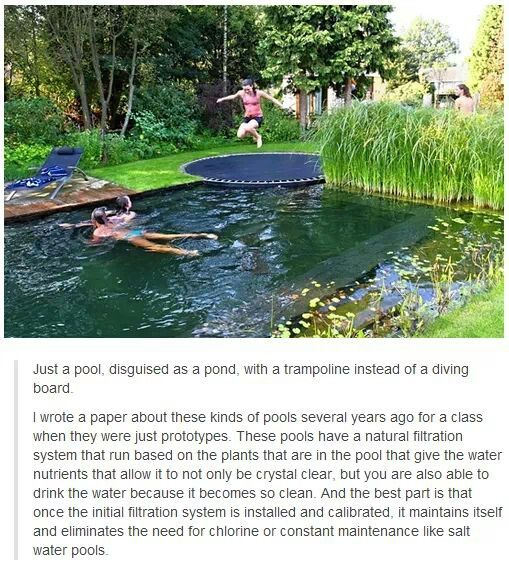Epic pond pool with trampoline. This is totally gonna be in my mansion :)