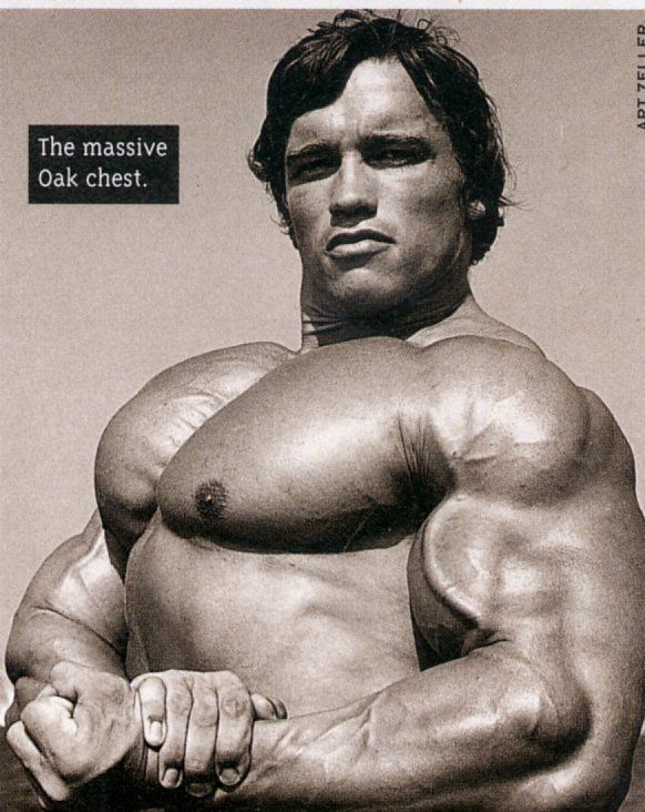 Pin by Martin on Old School Bodybuilding | Pinterest