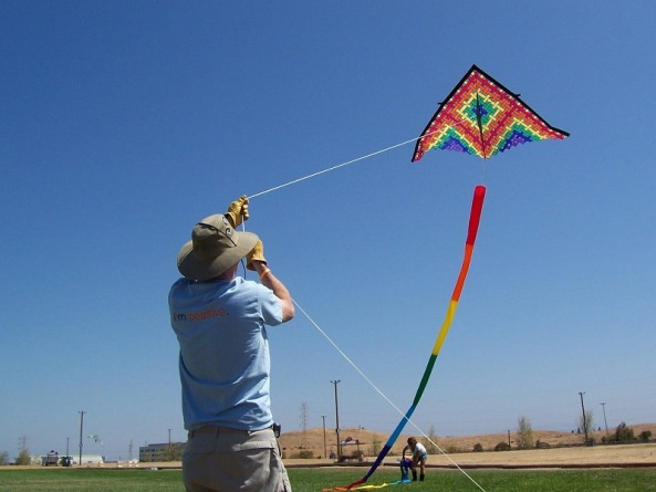 kite flying and management lessons This go fly a kite lesson plan is suitable for 4th - 6th grade students discuss junk mail and costs associated with receiving mail that is usually thrown away.