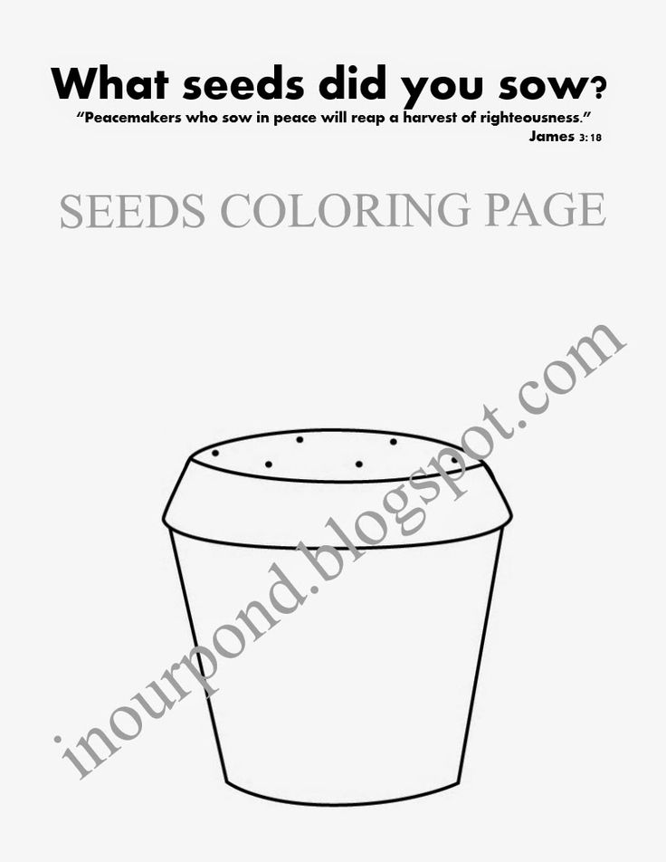 Pumpkin Seed Coloring Page Pages