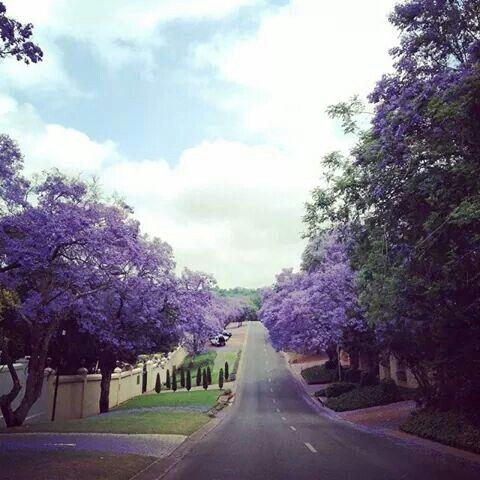 Pretoria - South Africa