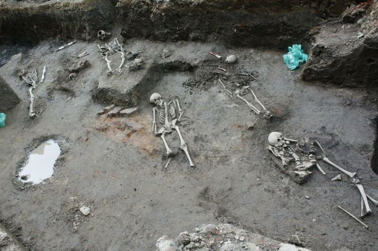 Arheologii au descoperit necropola moscheii Ali Bey in centrul Timisoarei