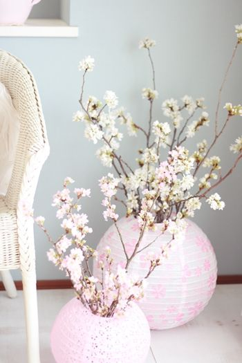 Arrange flowers the cherry blossoms in the paper lantern