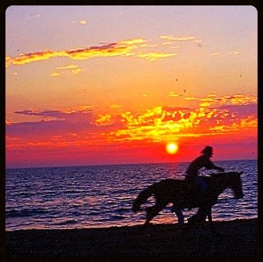Riding the sunset