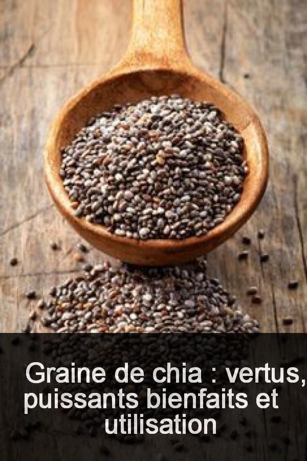 Graine de chia : vertus, puissants bienfaits et ...