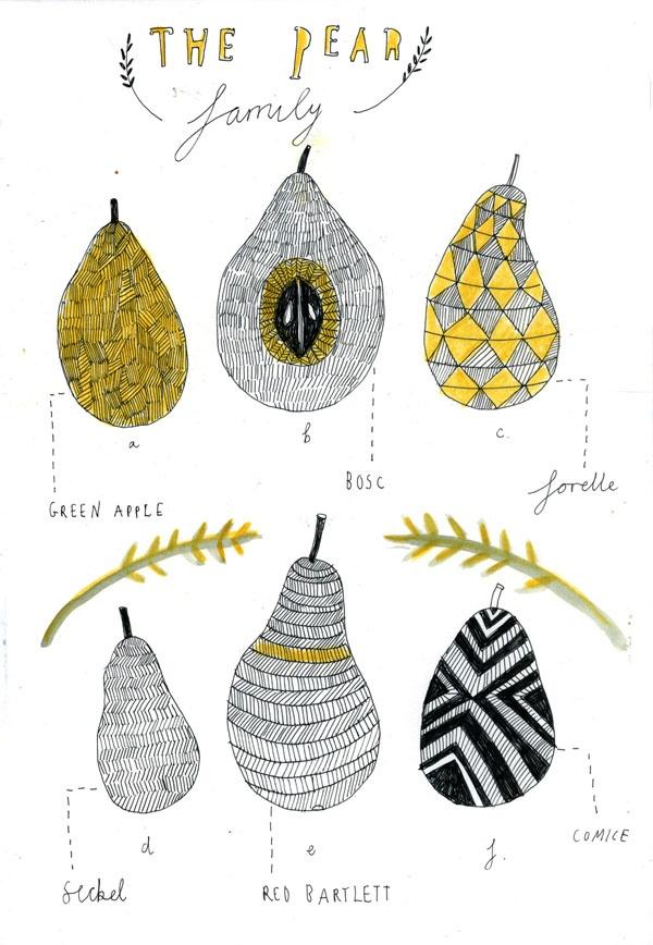 Recipe book illustrations. - Katt Frank Illustration.