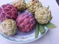 Sugarapple two types of fruits
