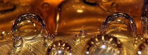 Best Lenses For Large Nature Shots