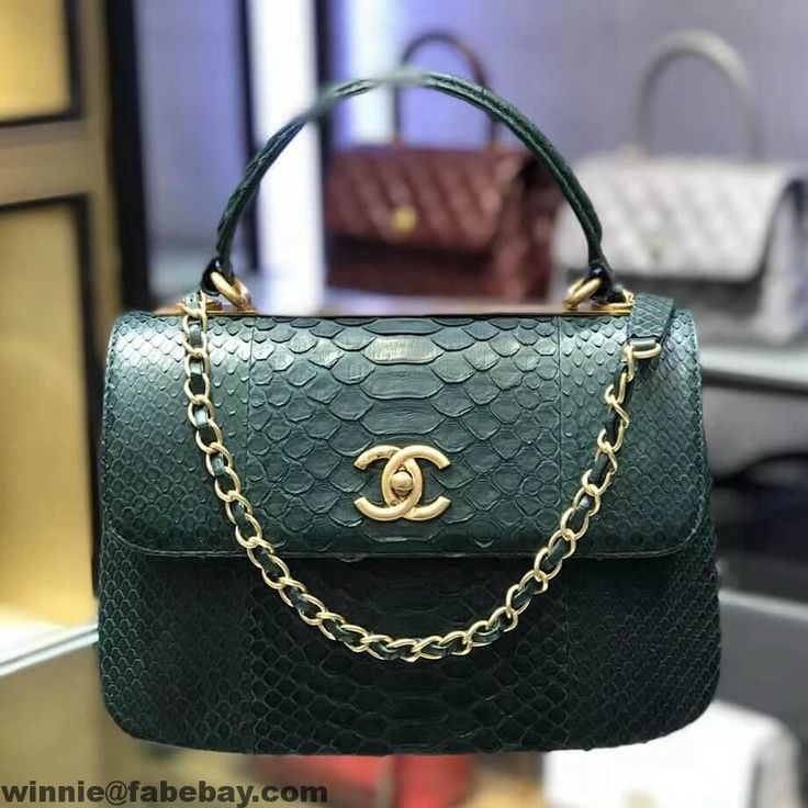 Chanel Python Small Trendy CC Flap Bag at Low Price e2e082ec048fc