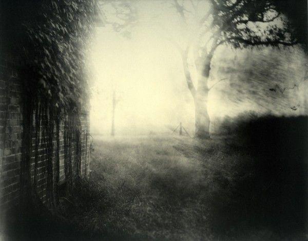 Sally Mann - Landscape (2009)