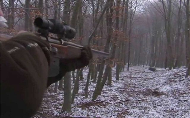 Wild boar populations are soaring in Europe just like here in the United States. Your basic sit and wait hunting is not helping much to control the booming number of hogs. Wild hogs breed faster then you can kill them with standard hunting practices.   http://riflescopescenter.com/category/barska-riflescope-reviews/