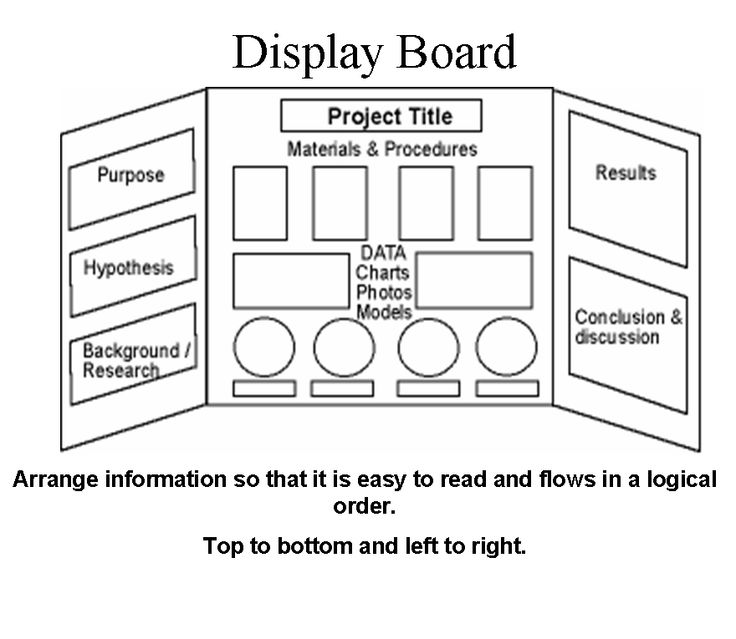 1000 images about science fair ideas on pinterest