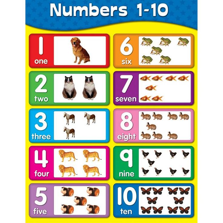 Shape Preschool Printables -