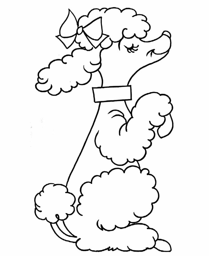 Afd226f1ba9a45b88b09cb57f05b5d58 kids coloring sheets preschool coloring pages jpg