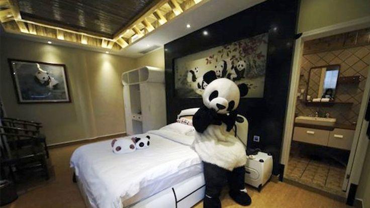 Panda inn Hotel, China - Next Trip Tourism