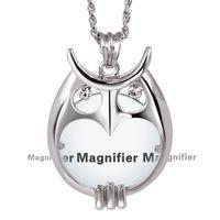 Colar lupa para leitura 2015 moda coruja pingente de colar Rhodium com cristal Magnifier colar