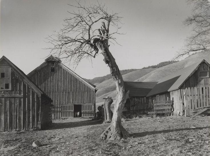 Minor White. Happy Farmyard, Grande Ronde Valley, Oregon. 1941