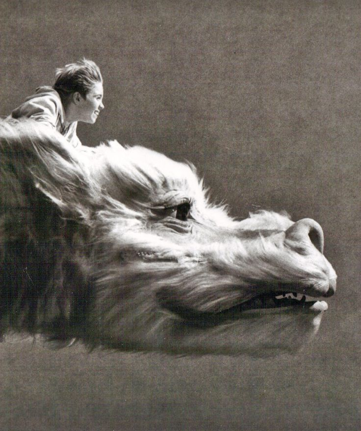 Bastien and Falkor from The NeverEnding Story...i loved this movie when i was a kid!