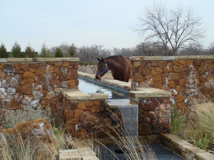 Outdoor watering trough becomes part of the landscaping in this horse's pasture- the boys need this!