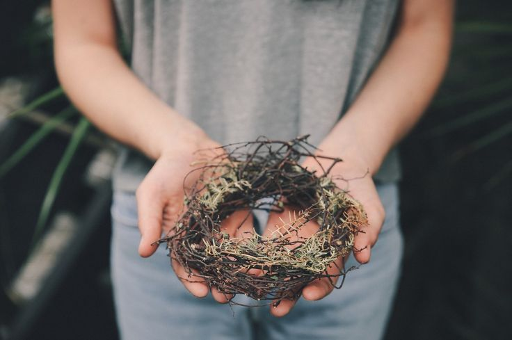 This week for #thepositiveproject, feel inspired by nature around you and  get creative.  Use your hands to make a seasonal wreath,  forage wild flowers to create a beautiful winter bouquet, or create a terrarium garden in an old agee jar. Have you made anything crafty recently?  tell us in the comments below!