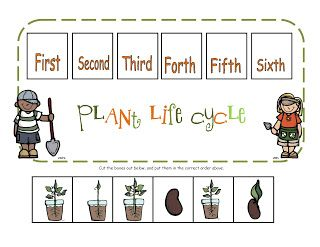 ... Life Cycles, Homeschooling Fun, Printables Plant, Cycle Printable