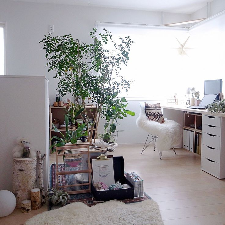 Overview/無印良品/IKEA/ムートン/コウモリラン/蘭...などのインテリア実例 - 2016-03-08 01:32:50