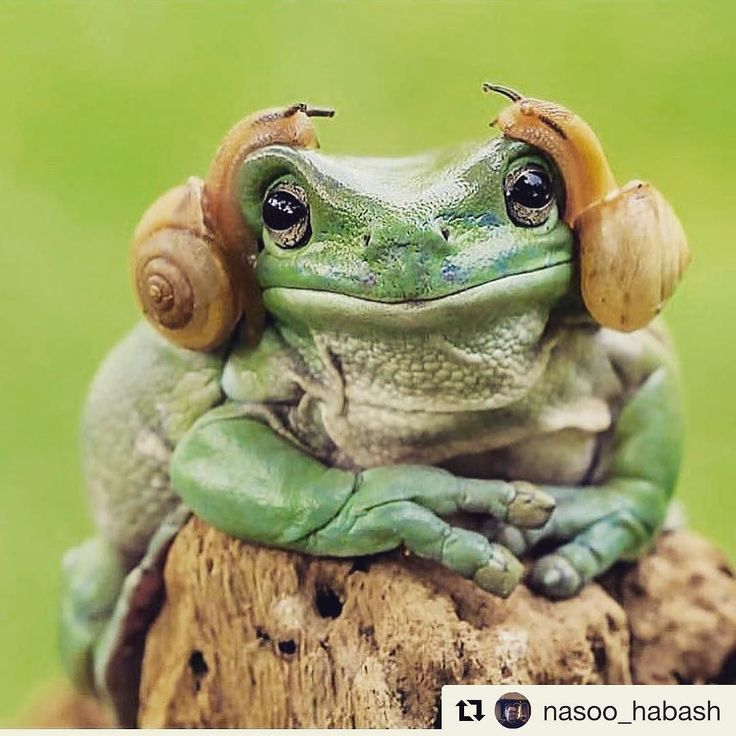 well if that doesn't brighten your day!  Via @nasoo_habash  Visit us at luvoutdoors.com for all the latest products news reviews and offers!  #outdoors #outdoorstyle #outdoorslife #outdoorsgirl #outdoorslover #outdoors360 #outdoorsy #outdoorshop #outdoorsfun #campingtrip #campingstyle #campingfun #campinglife #campingwithdogs #campingtime #campingweekend #hikingadventures #hikingfun #hikingbuddy #mountains #mountainscape #mountainspirit #mountainstyle #mountainlovers #moutainsoul…