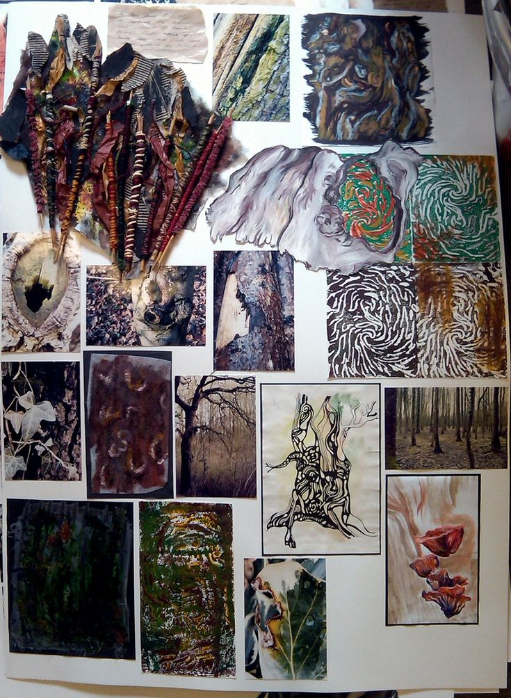 This is a large board that collaborates lots of my work from my GCSE exam project for Art, in which I chose to study 'Land And Earth', so focused on trees and their bark etc.