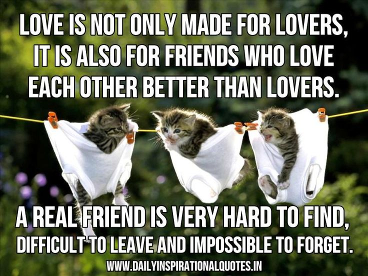 Love Is Not Only Made For Lovers, It Is Also For Friendsu2026 ( Friendship  Quotes )