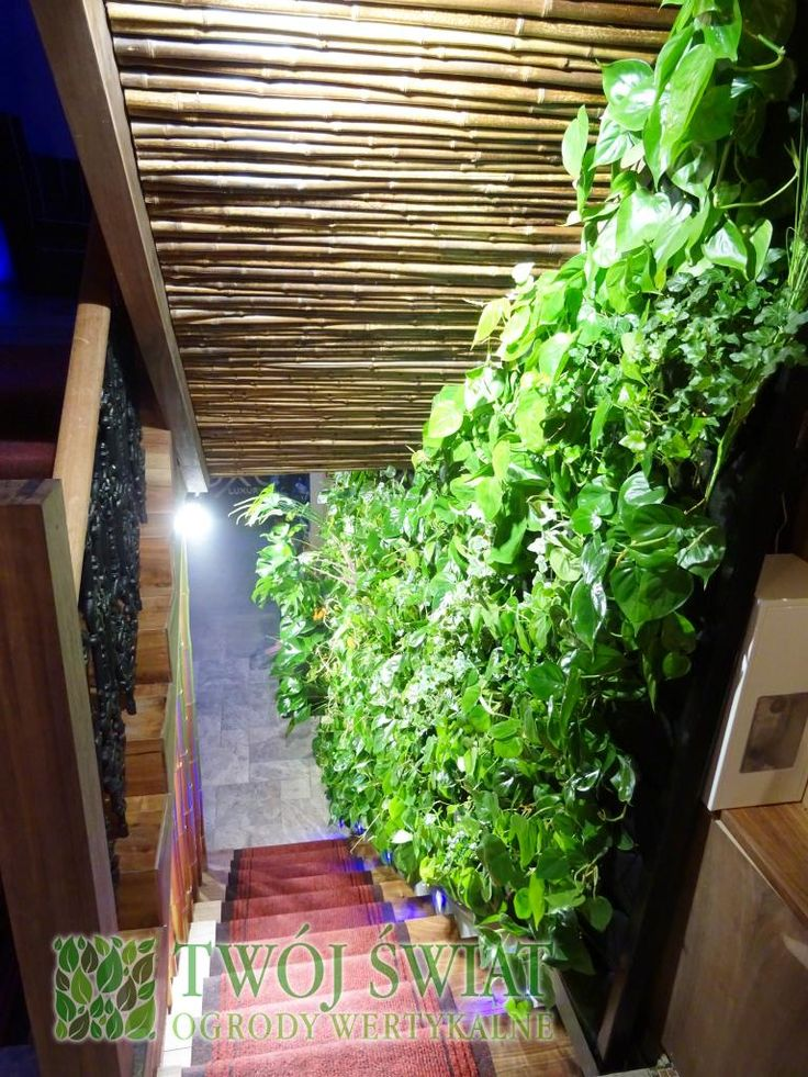 Zielona klatka schodowa w restauracji.