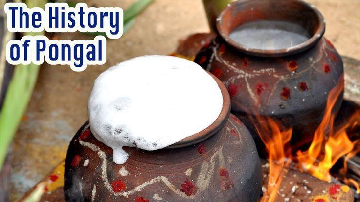 #pongal #thaipongal #bhogi #mattupongal #thiruvalluvarday - The History of Thai Pongal - Tamil Harvest Festival Celebration - தை பொங்கல்