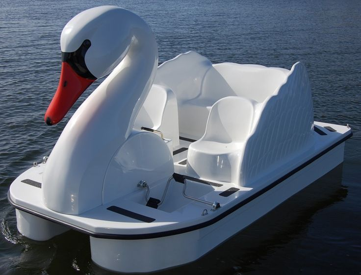 Front of Swan Pedal Boat