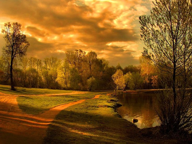 Clouds Fall Water Huge Lakeside Autumn Sky Golden Pond Road Lake Path Tree Green Wallpaper
