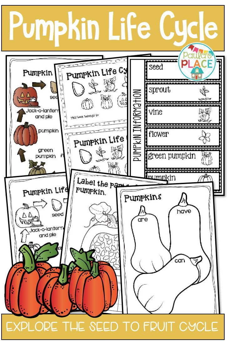 This Pumpkin Life Cycle Pack Has Eight Different Sections To Explore Pumpkins And How They Grow The Pump Pumpkin Life Cycle Life Cycles Life Cycles Activities [ 1102 x 732 Pixel ]