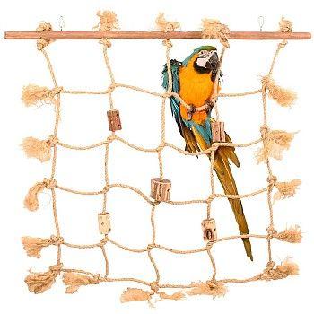 Parrot Cargo Net Climber