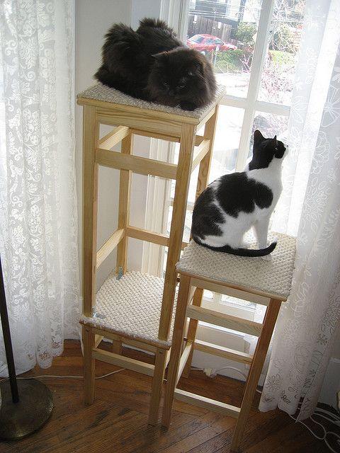 Ikea Hack Cat Tower Three Stools + Carpet Samples + A Couple Of Brackets U003d  Catu2026