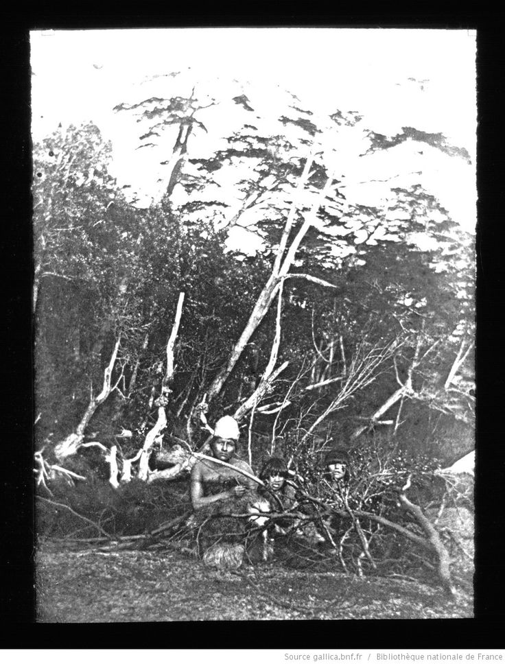 Terre de Feu-Patagonie. 30, Indiens cachés dans les [buissons]. Environs de Buen Suceso / [mission] Rousson et Willems ; [photogr.] Rousson ; [photogr. reprod. par] Molténi [pour la conférence donnée par] Willems