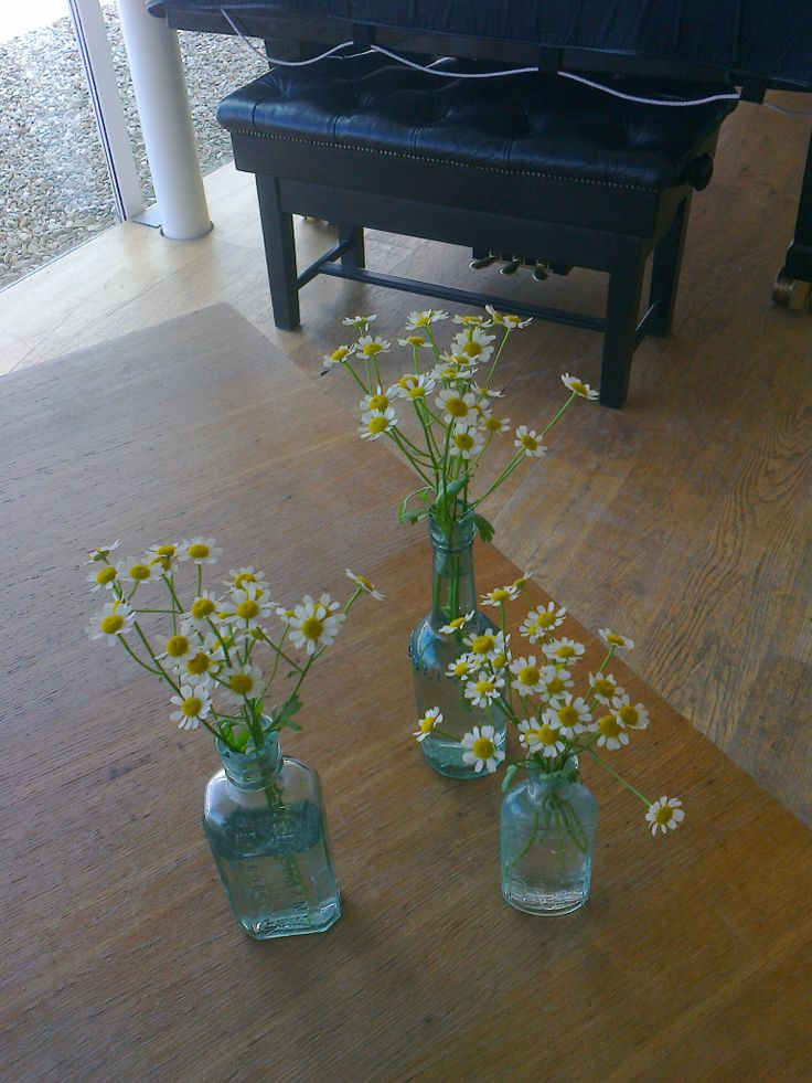 beautiful dainty vintage bottles with daisies