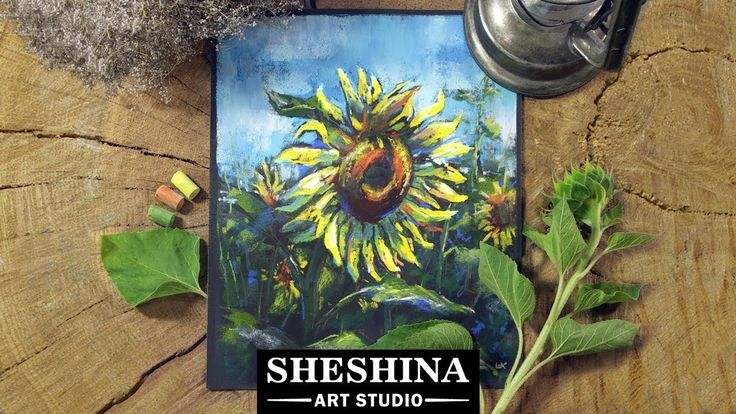 How to draw a sunflower with soft pastels  Sheshina Ekaterina