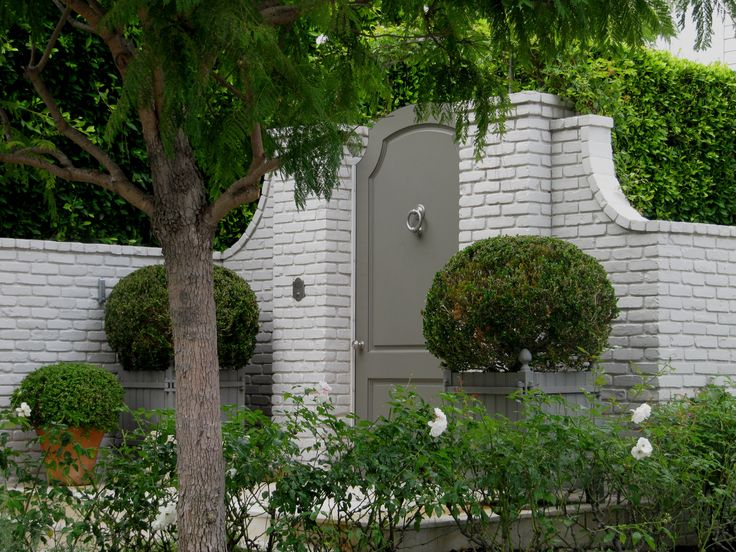 Elegant Painted garden gate in painted brick wall.   Boxwood in Wood Planters