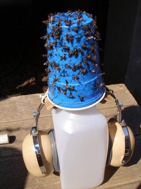 Deer Fly traps for outdoor running, playing, farms, pools, and anything else that attracts them! Different ideas in the comments of how to set them up for different activities!